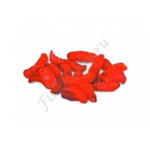 Личинки пчел red